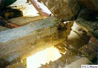 Dry rot in a large carrier beam end.